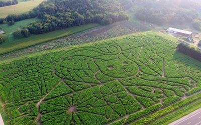 Treinen Farm Voted One of the Top Ten Corn Mazes in the U.S.