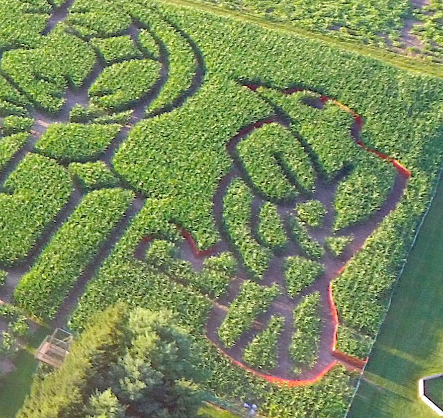 Children's Maze 2020