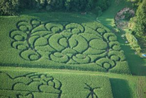 The New Thing for 2016 — The Circle Maze