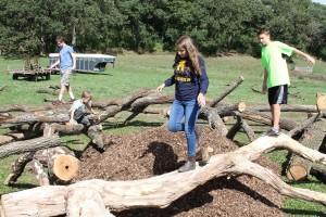 playing on logs