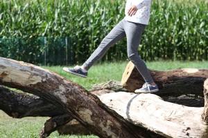 Log climbing