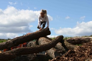 Climbing a log tree