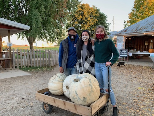giant white pumpkins