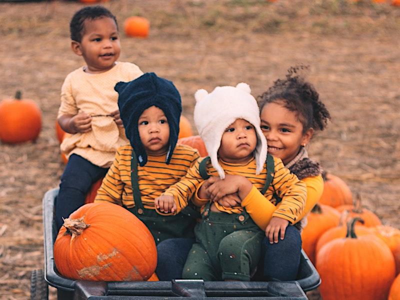 Kids getting pumpkins at Treinen Farm pumpkin patch