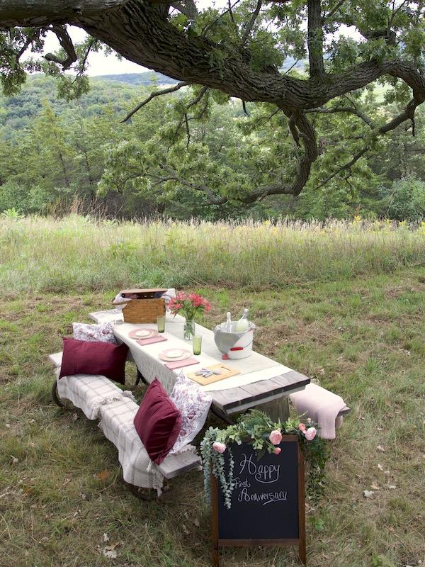 Fancy Picnic in oak Grove