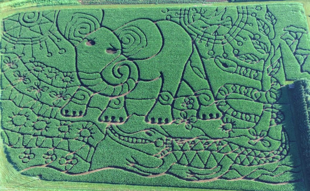 "The 2018 Maze is the Rudyard Kipling Story ""The Elephant's Child"""