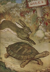 The Tortoise and the Hare Maze