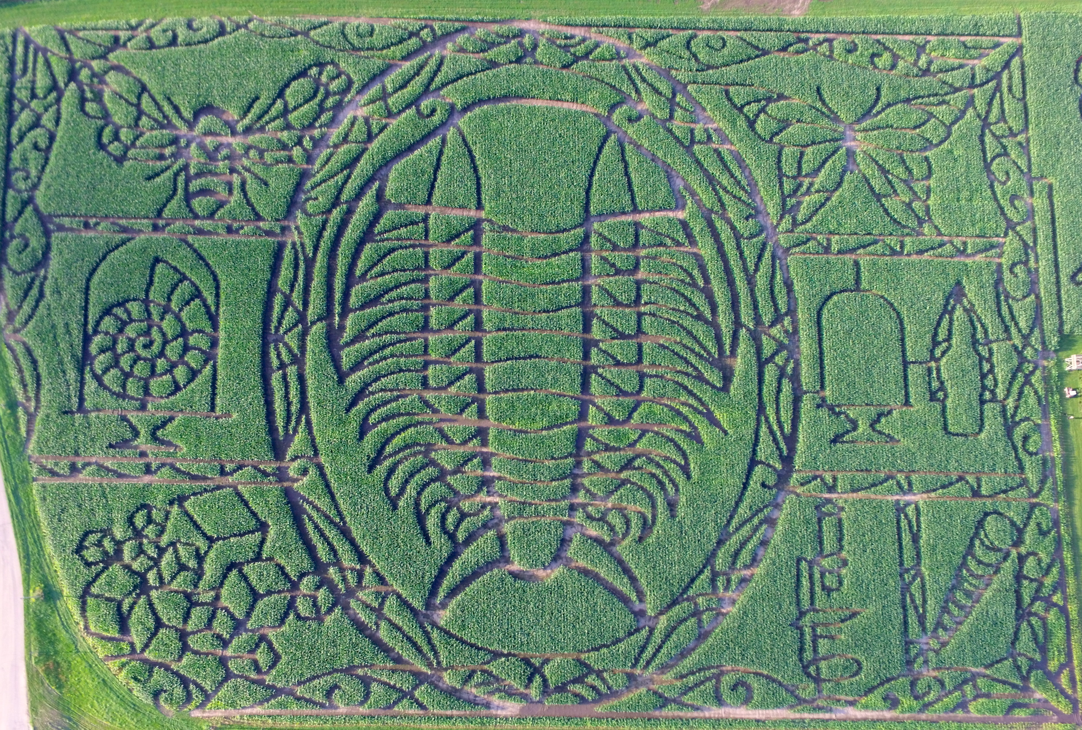 2017 Trilobite Corn Maze